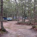 Bilde fra Martha's Vineyard Family Campground
