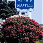 Surf Motel and Gardensの写真