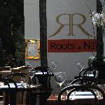 Roots at N1 Foto