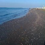  jesolo beach