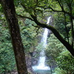  San Luis Waterfall, Monteverde Costa Rica