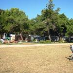  Great big grass area between the camping area and water