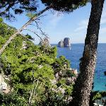  Capri