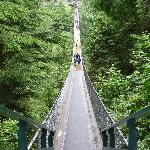 nearby Capillano Suspension Bridge
