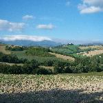  Le Marche