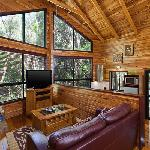 The Mouses House Rainforest Retreat Foto