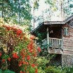 Woodsman Cottage