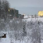 Φωτογραφία: Motel 6 Anchorage Midtown
