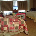  3 adults/1 baby: 1king bed, 1queen bed, dbl sofa, recliner, full bath, TV, small tables, mini ki