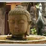 Guest Photo - Buddha Pond
