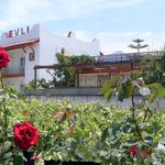 Evli Apartments