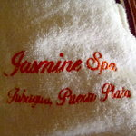 Jasmine Spa and Wellness Holistic Health Centre