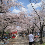 Kemasakuranomiya Park