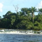 Awarradam Jungle Lodge Paramaribo