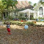 Figtree House & Cottage Foto