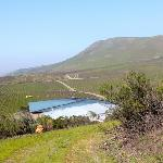 Cambria Winery & Vineyards