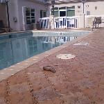 Holiday Inn Hotel & Suites St. Augustine/Historical District resmi