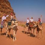 Ready for a camel ride?