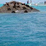Shipwreck where fishies feed