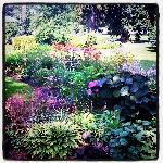  Perennial Garden