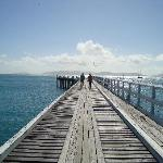  Jetty