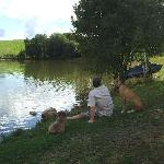 Relaxing by the lake with the owners' dogs