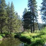 Truckee Donner Lodge照片