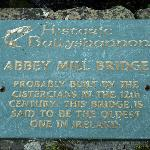 Said to be the oldest bridge in Ireland