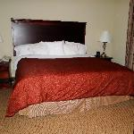 Foto de Homewood Suites by Hilton Huntsville-Village of Providence
