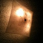  ceiling light with critters