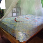 El Roble Hostal  (Playa San Diego-El Salvador)の写真