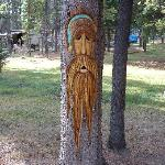  One of Wood Spirit Tree Carvings