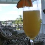 Mimosa's on the porch!