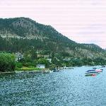 Davis Cove Lakeshore Resort照片
