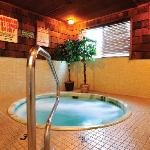 Shilo Inns Medford Spa