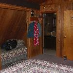 Foto de Evergreen Lodge at Moosehead