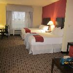 Foto de Holiday Inn Express Hotel & Suites Houston Space Center-Clear Lake