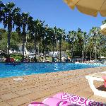  Piscine Riu Tropicana
