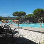Camping Lacona Pineta