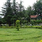  well maintained garden with cottages in background