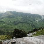 View from the top - Rajamalai National Park