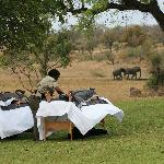  Massages on the back lawn with Elephants headind to waterhole