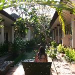 Foto Little Pond Homestay