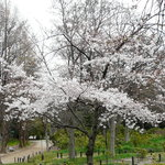 Nagai Park