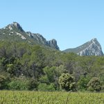 pic saint loup wine area