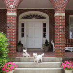 Chesapeake Bay View Bed & Breakfast
