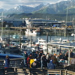 Seward Boat Harbor