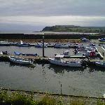 The wee harbour