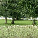 Grounds alongside Lough Neagh