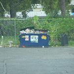 Garbage in parking lot outside of rooms !